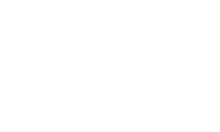 American Muslim Institution